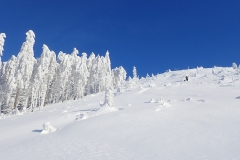 2021-01-16_MWH-Winter_7418
