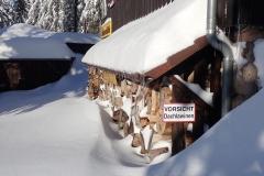 2021-01-15_MWH-Winter_7449