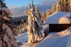 2021-01-15_MWH-Winter_7487