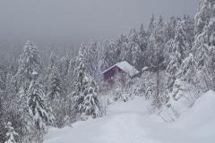 2021-01-16_MWH-Winter_7395